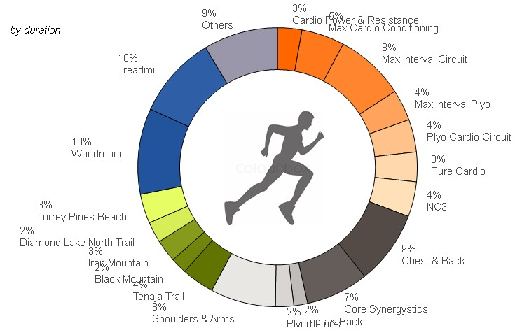 QlikView Color Script - Featured Image - Donut Chart for Workout activity