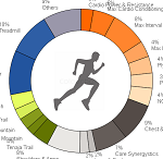 QlikView Color Script – Featured Image Thumbnail – Donut Chart for Workout activity