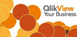 All Real QlikView Developers Have This in Their Library [Review]